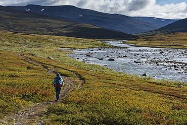 Hiker on trail through Tjäktjavagge south of Singi hut, Kungsleden trail, Lapland, Sweden