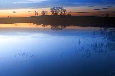 View of lagoon and wetland habitat, Lagunas de Villafafila Reserve, Zamora, Castilla y Leon, Spain, April