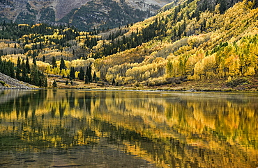 Fall colors at the Maroon Bells Aspen, Colorado.