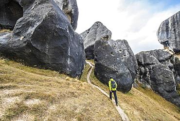 Man Hiking At Castle Hill Near Arthur's Pass Outside Of Christchurch, New Zealand