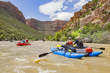 Group Of Rafters On Yampa And Green Rivers Through Dinosaur National Monument