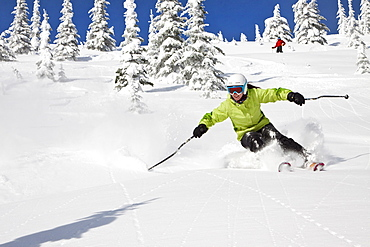 Female Skier Skiing On Fresh Powder At Whitefish Mountain Resort In Whitefish, Montana, Usa