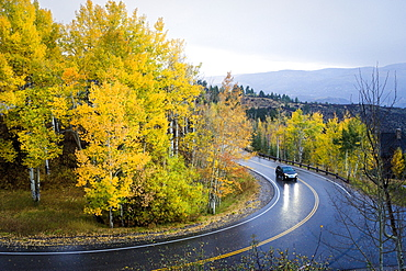 Car Driving On Curvy Mountain Road In The Rain Following Aspen Trees