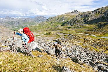 Man And Woman Hiking Up A Steep Hill In Talkeetna Range In Alaska, Usa