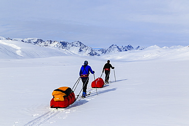 Mountaineering Team Pulling Pulk Sleds On The Way To The Stauning Alps