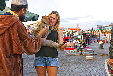 Tourist Holding A Trained Barbary Monkey In Jemaa El Fna Square