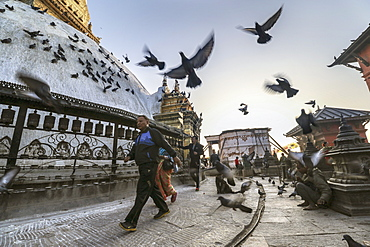 Pigeons And Pilgrims Gather At Swayambhunath On A Crisp Fall Morning