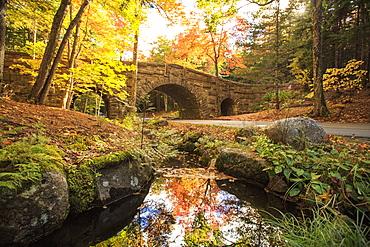 Road Bridge, Acadia National Park, Maine