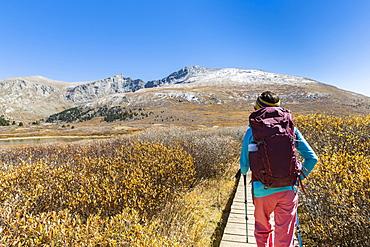 Female Hiker Walking On Boardwalk Beneath Mount Bierstadt In Colorado