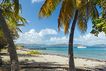 Scenic View Of Beach Scene On Caribbean Salt Island, British Virgin