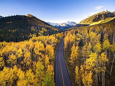 Aerial view of fall colors and a road in Aspen Colorado with a fresh dusting of snow (Drone)