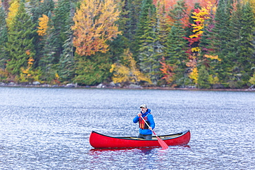 A Man Canoeing On Greenough Pond In Fall At Wentworths Location, New Hampshire