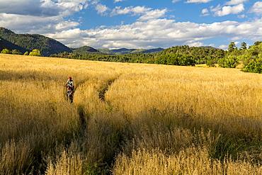 Young girl riding mountain bike through a grass field in Falls Creek