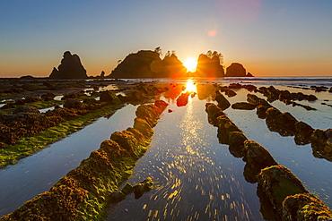 Sunset At Shi Shi Beach, Olympic National Park, Washington, Usa