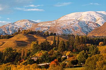 Beautiful Autumn Colors Of New Zealand