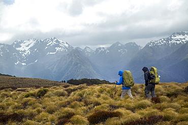 Hiking Along The Kepler Track In Fiordland National Park, New Zealand