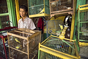 A Caged Bird Vendor At The Pasar Ngasem Bird Market Of Yogyakarta, Java, Indonesia