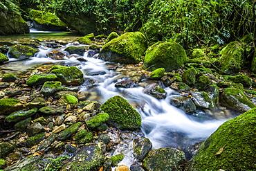 Atlantic Rainforest river in Serrinha do Alambari Ecological Reserve, Rio de Janeiro, Brazil