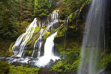 Panther Creek Falls, Washington.