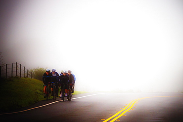 Bicyclists on a foggy early morning ride in Marin County, California. The focus on this image is soft.