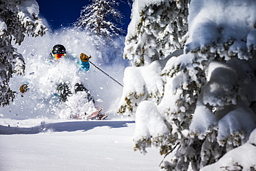 A man skiing powder at Alta, Utah