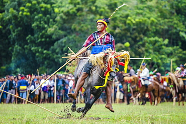 Man with spear participating in Pasola Festival, Sumba island, Indonesia