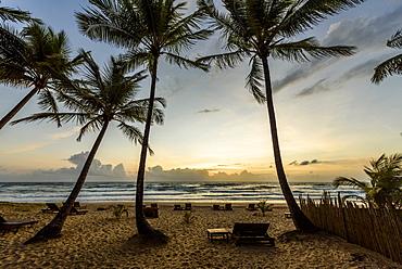 Beautiful dawn on tropical beach with palm trees in Peninsula de Marau, Barra Grande, Bahia state, Brazil