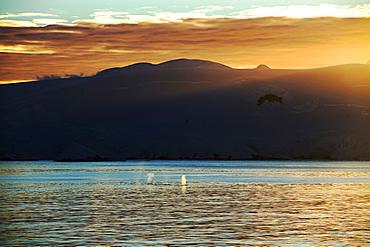 Polar scenery at sunset, Gerlache Strait, Antarctica