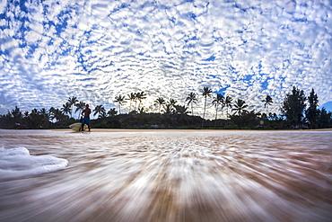 Surfer and palm trees on beach, Oahu, Hawaii, USA