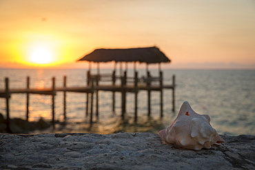 Beautiful view of conch shell and pier on beach at sunset, Nassau, Bahamas