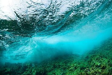 Underwater view of wave breaking over Caribbean Reef, Atlantic Ocean, Belize