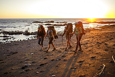 Four female backpackers hiking along beach at sunset, Lost Coast Trail, Kings Range National Conservation Area, California, USA