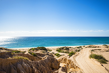 View of road on beach and horizon over sea, Cabo Pulmo, Baja California Sur, Mexico
