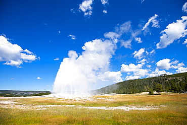 Scenic view of Old Faithful geyser, Yellowstone National Park, Wyoming, USA