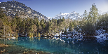 Scenic view of Blausee lake, Bern Canton, Switzerland