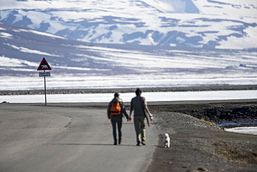 Couple with dog walking along road with bear warning sign in distance, Longyearbyen, Svalbard and Jan Mayen, Norway