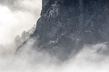 Beautiful nature photograph with view of cliff in winter with fog, Cheile Rametului, Alba County, Romania