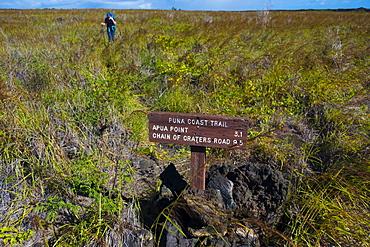 Puna Coast, Apua Point trail sign along the Puna Coast Trail in Hawaii Volcanoes National Park, Hawaii Islands, USA