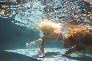 Underwater view of boy and dog swimming in pool