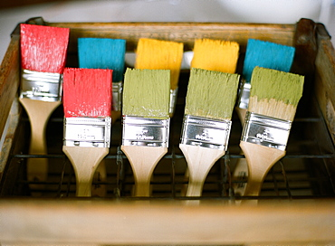 Colorful paint brushes on display, Vancouver, British Columbia, Canada