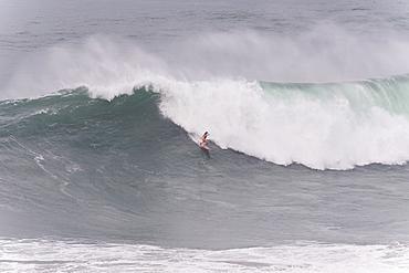 Surfer dropping in massive braking wave, Nazare, Leiria, Portugal