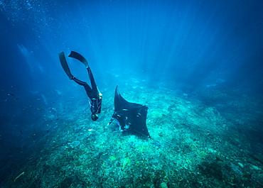 Diving with mantas, Nusapenida, Bali, Indonesia - 857-95792