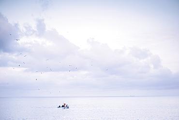 Pristine seascape with lone fishing boat returning to port, Camogli, Liguria, Italy