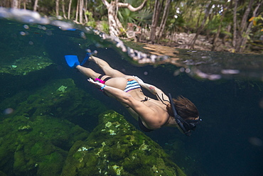 Side view shot of woman in bikini snorkeling,?Cenote?el Eden, Riviera Maya,?Playa?del?Carmen, Quintana Roo, Mexico