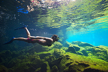 Side?view shot of woman in bikini snorkeling,?Cenote?el Eden, Riviera Maya,?Playa?del?Carmen,?Quintana?Roo,?Mexico