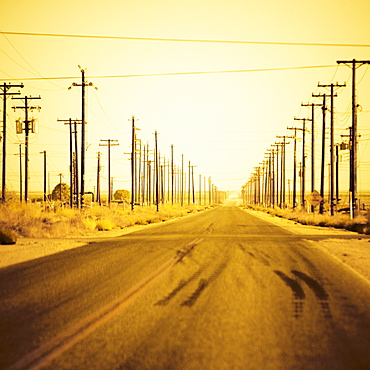 A utility pole lined empty back road in the Central Valley, California.