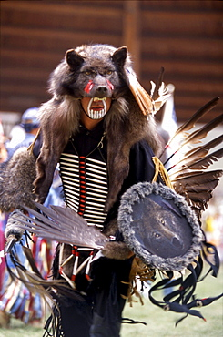 Native in ornate traditional regalia resembling a wolf, dances during annual powwow held in Kamloops, British Columbia.