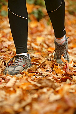 Rose Cowles runs through the fall leaves on the Boogerman Loop trail in the Cataloochee area of the Great Smoky Mountains National Park, NC