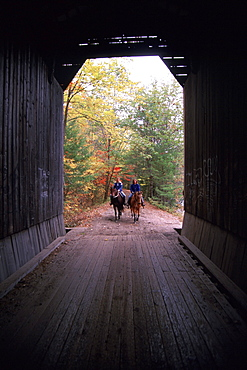 Horse back riding with Terry Macnamara, on the light brown horse, Sky and her friend  Kym Bollman on the black horse named, Maykala.  In some photos they are on the Pier or Chandler Station covered bridge.