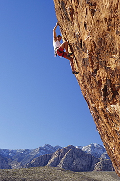 Rock climber ascends The Gift, 5.12d. The Gallery, Red Rocks, Nevada, USA